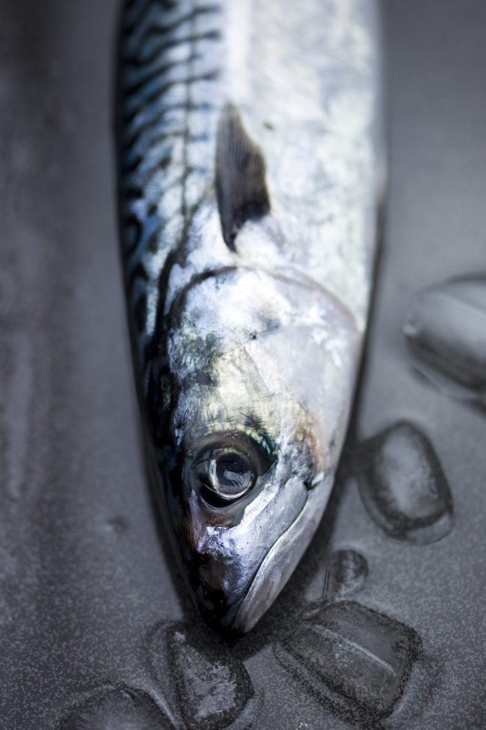 Mackerel, food photography, fresh fish, food, Liverpool, Manchester, Cheshire, Leeds, London