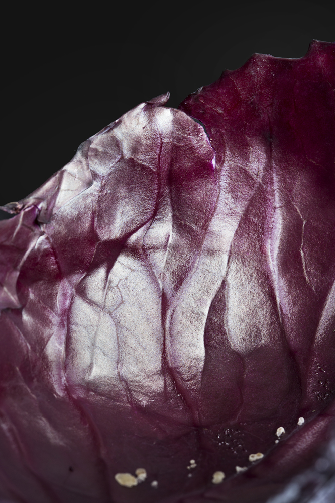 Food photographer UK, Commercial Photographer Liverpool, Manchester, London, Birmingham, Red Cabbage
